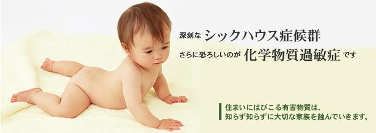 5.図 (2)